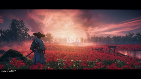 The Ghost of Tsushima Director's Cut
